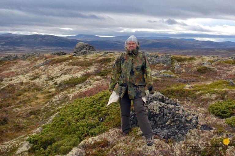 Im Dovrefjell-Nationalpark (Norwegen)