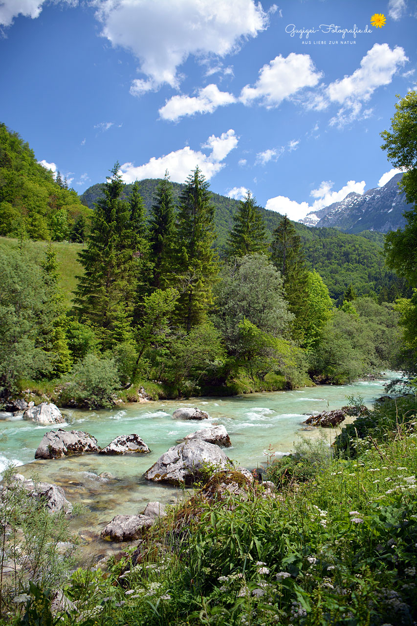 An der Soca (Triglav-Nationalpark, Slowenien)